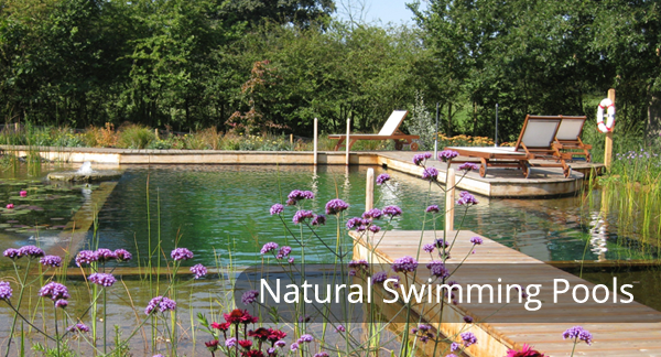 Natural Swimming Pools And Ponds Woodhouse Landscapes