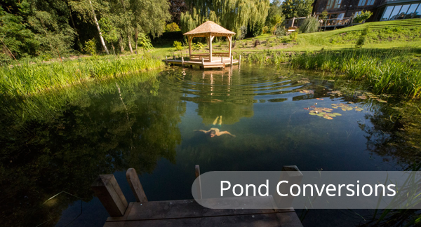 pond-conversions-section