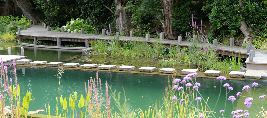 Woodhouse Natural Swimming Pools, Ponds & Conversions